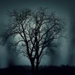 現代の呪い!生霊の症状と自分で出来る除霊方法