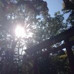 氏神様への参拝方法|神仏からのメッセージの受け取り方
