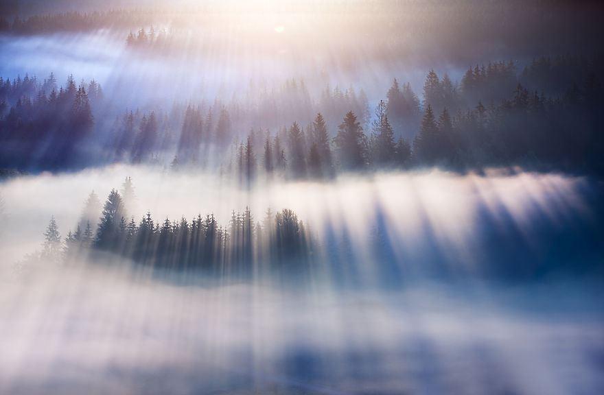 意識覚醒の光