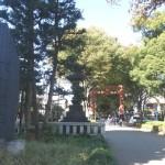 2015年11月の活動を氷川神社からスタートしました