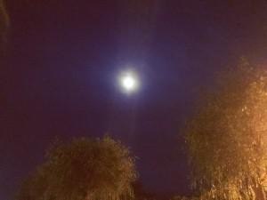 諏訪湖満月