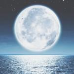【満月】一斉ワーク参加者の感想シェア