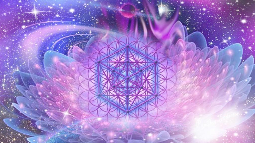 ob_ef10ff_fleur-de-vie-cube-metatron